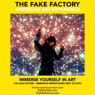 THE FAKE FACTORY immersive mirror room_01542