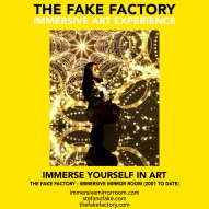 THE FAKE FACTORY immersive mirror room_01566