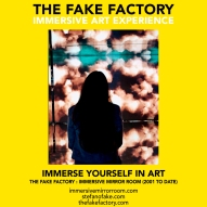THE FAKE FACTORY immersive mirror room_01600