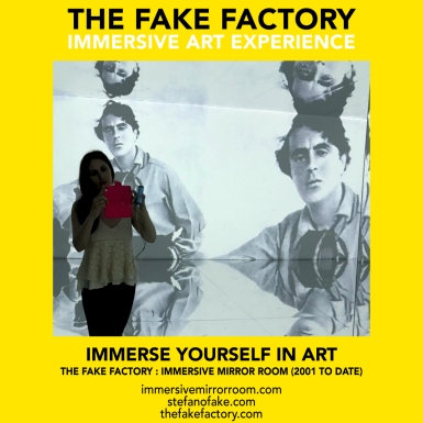 THE FAKE FACTORY immersive mirror room_01611