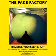 THE FAKE FACTORY immersive mirror room_01612