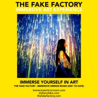 THE FAKE FACTORY immersive mirror room_01613