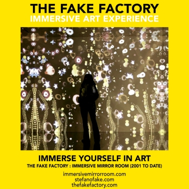 THE FAKE FACTORY immersive mirror room_01615