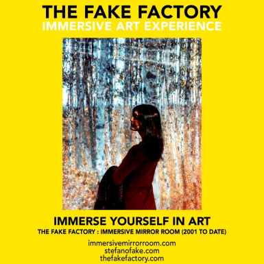 THE FAKE FACTORY immersive mirror room_01656