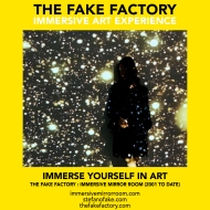 THE FAKE FACTORY immersive mirror room_01700
