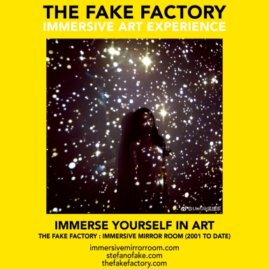 THE FAKE FACTORY immersive mirror room_01709