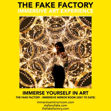 THE FAKE FACTORY immersive mirror room_01754
