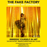 THE FAKE FACTORY immersive mirror room_01772