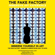 THE FAKE FACTORY immersive mirror room_01794