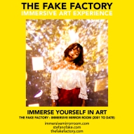 THE FAKE FACTORY immersive mirror room_01820