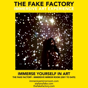 THE FAKE FACTORY immersive mirror room_01829