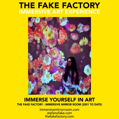 THE FAKE FACTORY immersive mirror room_01857
