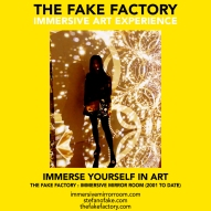 THE FAKE FACTORY immersive mirror room_01893