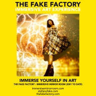 THE FAKE FACTORY immersive mirror room_01898
