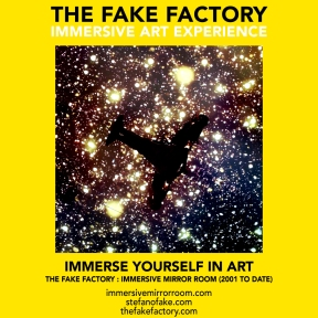 THE FAKE FACTORY immersive mirror room_01929