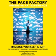 THE FAKE FACTORY immersive mirror room_02012